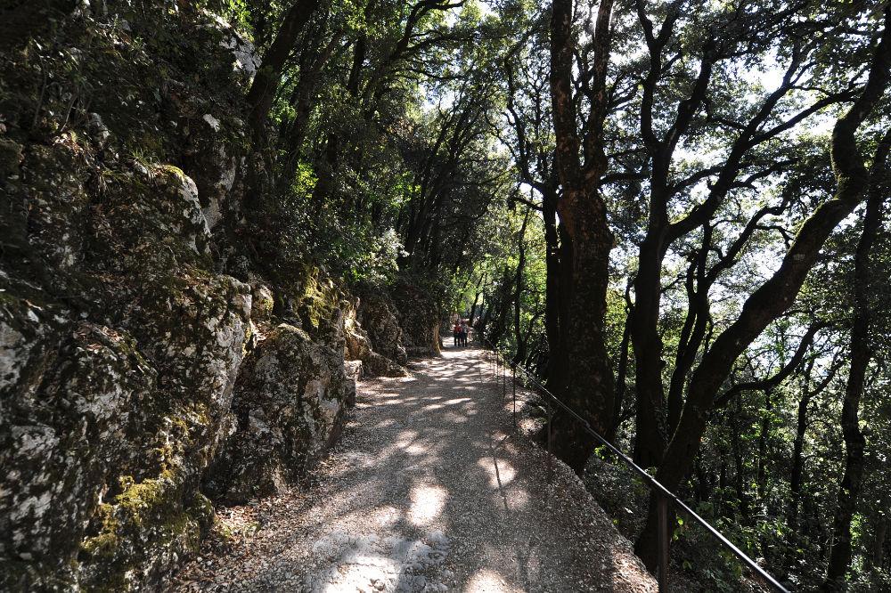 Da Assisi a Spoleto a piedi